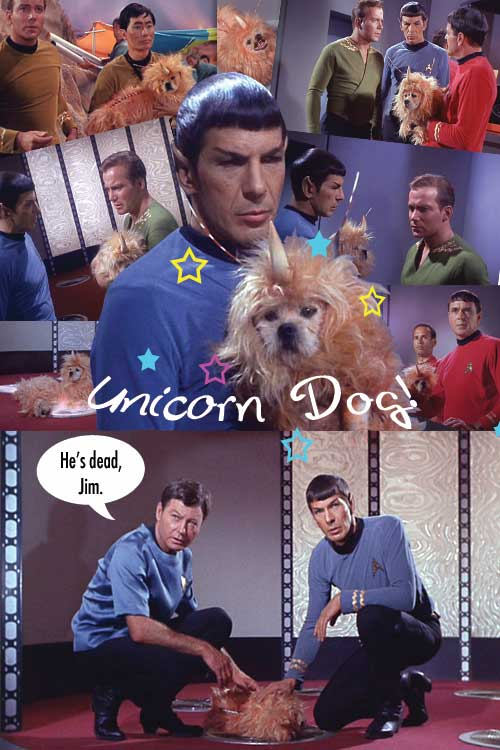 Unicorn Dog collage