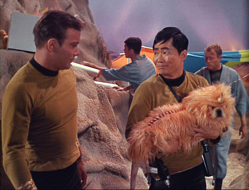 Sulu shows Kirk the unicorn dog