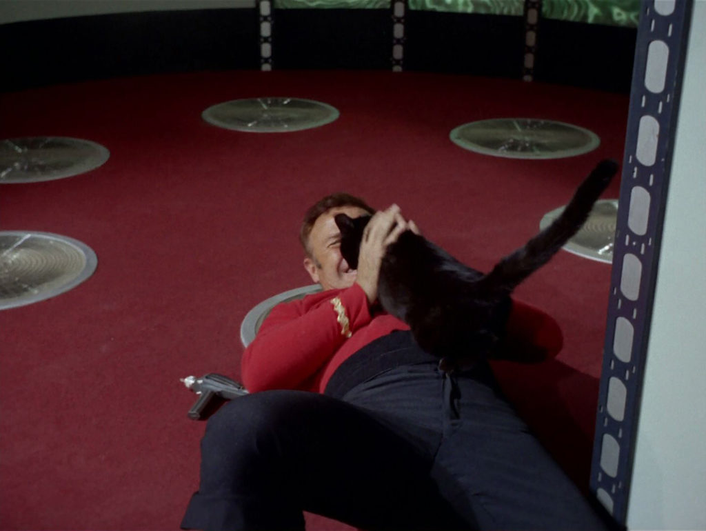 Cat knocks down a redshirt on the transporter pad