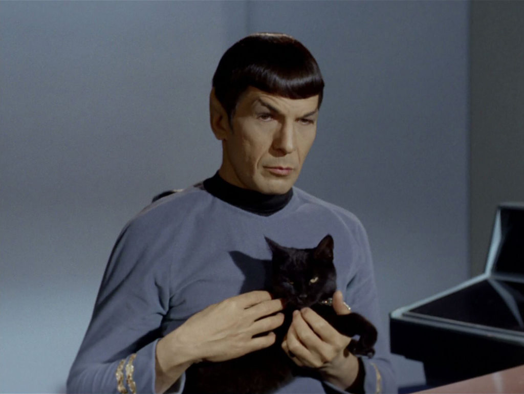 Spock holding the black cat, Isis